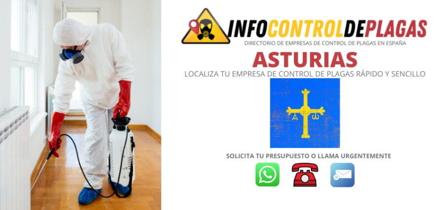 Control de plagas Asturias