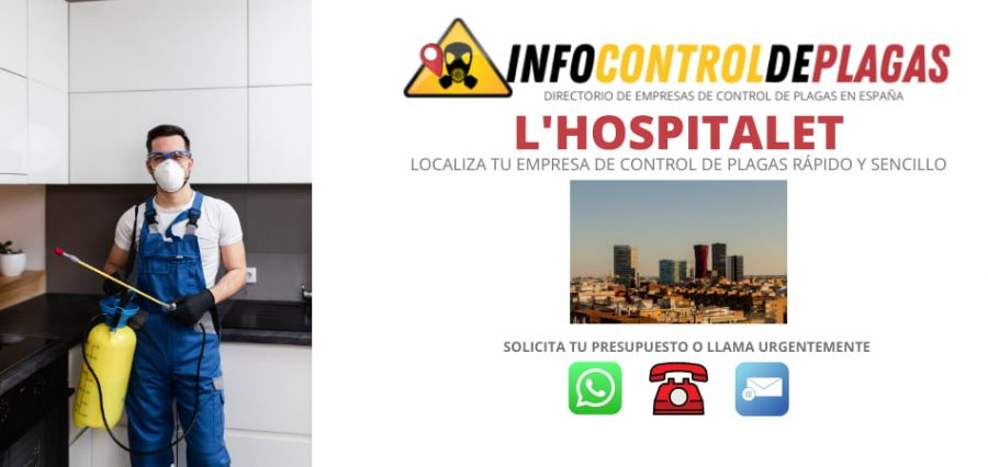 Control de plagas en Hospitalet