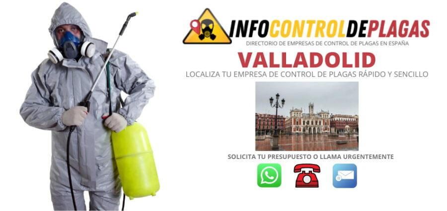 Empresas de control de plagas en Valladolid