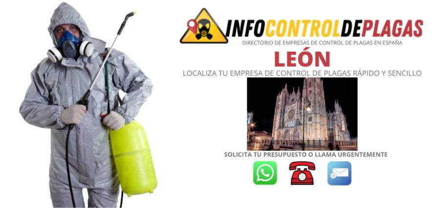 eMPRESAS DE CONTROL DE PLAGAS EN León