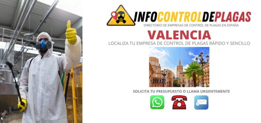 cONTROL DE PLAGAS EN vALENCIA PRECIO