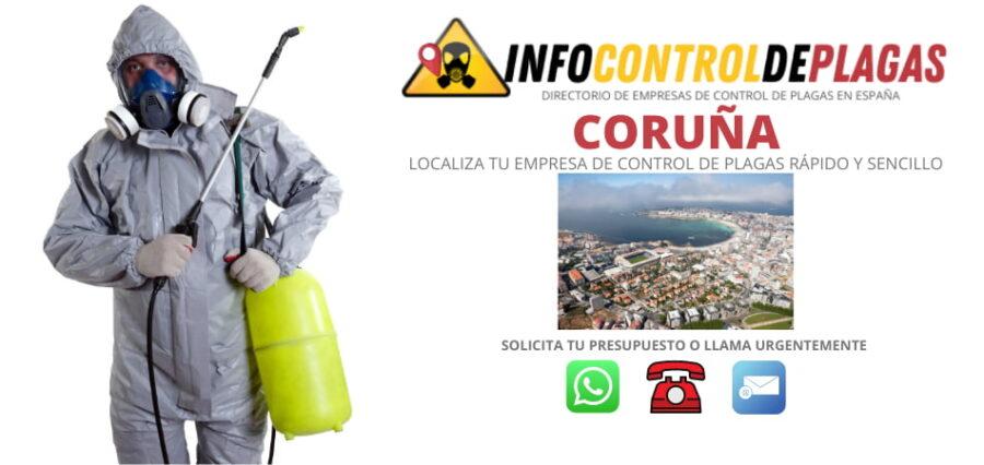 Empresas de control y fumigación de plagas en A Coruña