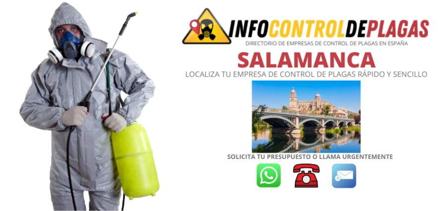 Empresas de control de plagas de Salamanca con el mejor precio