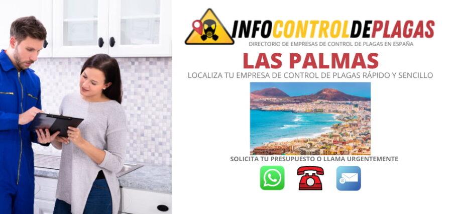 CONTROL DE PLAGAS EN LAS PALMAS