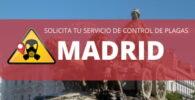 Control de plagas en Madrid, mejores empresas