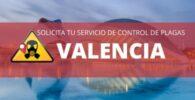 Empresas de control de plagas en Valencia