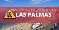 EMPRESAS DE CONTROL DE PLAGAS Y FUMIGACIÓN EN LAS PALMAS