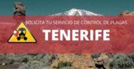 Empresas de fumigación y control de plagas en Tenerife