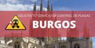 Empresas de Control de Plagas BURGOS