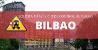 CONTROL DE PLGAS EN BILBAO PRECIO