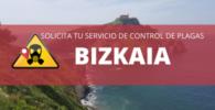 Empresas de control de plagas en Bizkaia