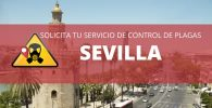 empresas de control de plagas en Sevilla precio