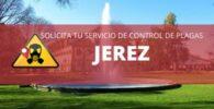 Control de plagas en Jerez