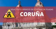 Control de plagas Coruña