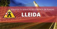 CONTROL DE PLAGAS LLEIDA PRECIO