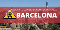 Control de plagas BARCELONA